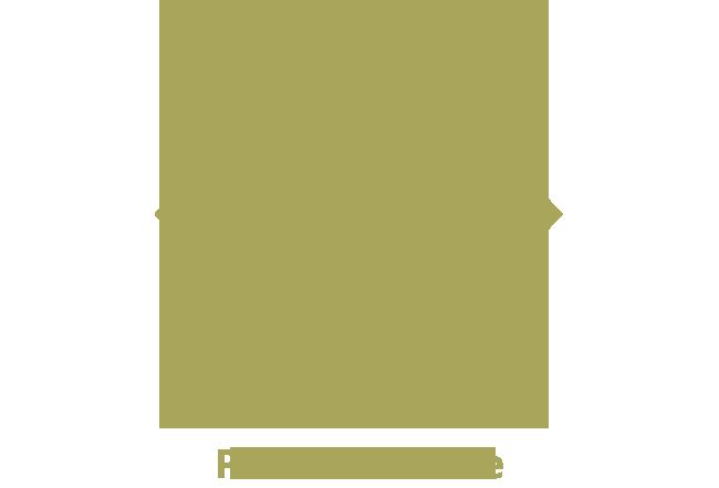 pin-piazzabiade